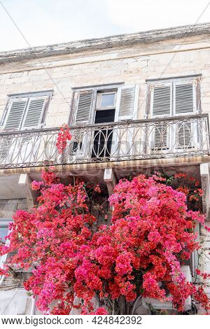 Bougainvillea Red Flowers At Ermoupolis Syros Island, Cyclades, Greece.