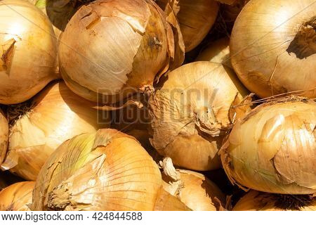 Composition Of Onions Placed In A Street Food Market. Background Image Of Fresh Food