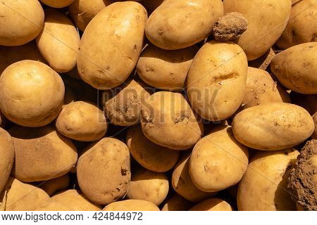 Composition Of Potatoes Placed In A Street Food Market. Background Image Of Fresh Food