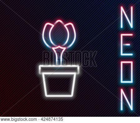 Glowing Neon Line Flower Tulip In Pot Icon Isolated On Black Background. Plant Growing In A Pot. Pot