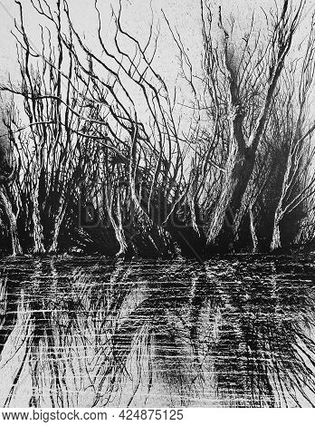 The Wild Coast Of Thick Undergrowth. Black Ink On Cardboard