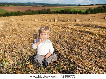 Little Boy Eating German Sausage On Goden Hay Field