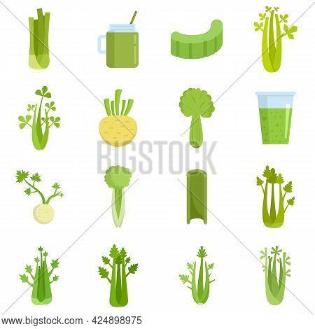Celery Icons Set. Flat Set Of Celery Vector Icons Isolated On White Background