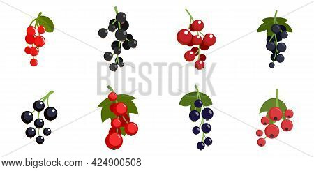 Currant Berry Icons Set. Flat Set Of Currant Berry Vector Icons Isolated On White Background