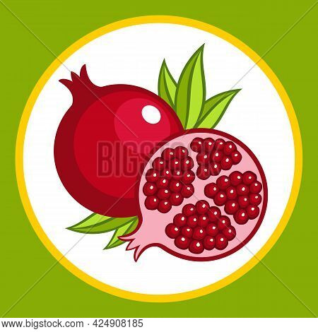 Drawn Stylized Whole And Cut Pomegranate Fruit. Vector Illustration.