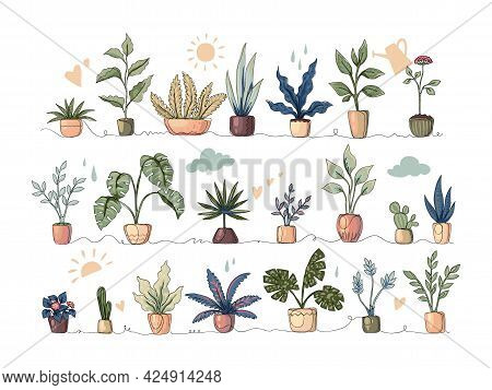 Continuous Line Houseplants. Cartoon Monoline Flowers. Tropical Plants With Leaves And Foliage. Cute