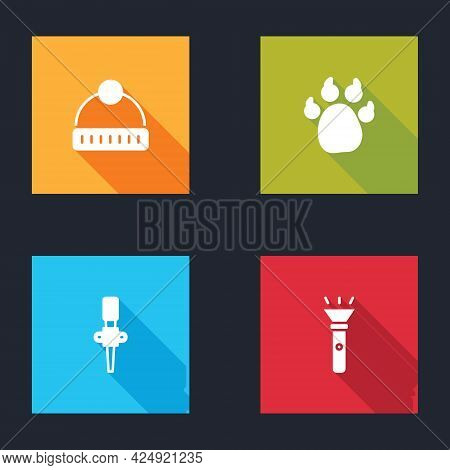 Set Winter Hat, Paw Print, Torch Flame And Flashlight Icon. Vector