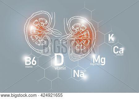 Essential Nutrients For Kidneys Health Including Natrium, Magnesium, Vitamin B6, Calcium. Design Set