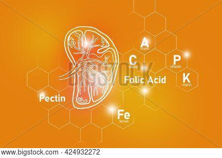 Essential Nutrients For Spleen Health Including Pectin, Folic Acid, Vitamin P, Ferrum. Design Set Of