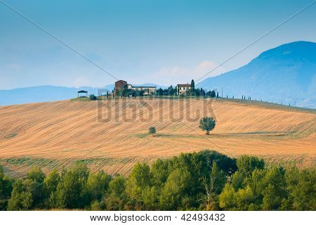 Tuscany Landscape In Val D'orcia