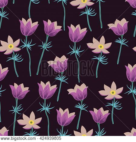 Seamless Pattern With Pasque Flowers Isolated On White Background.