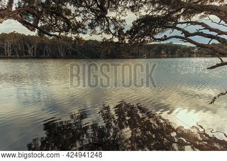 Photograph Of The Water And Trees At Avoca Lagoon On The Central Coast In New South Wales In Austral