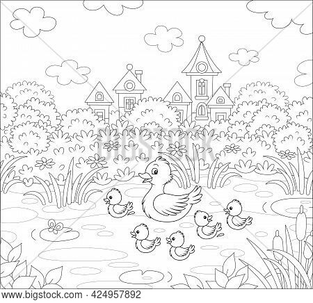 Cute Duck And A Merry Brood Of Little Ducklings On A Pretty Pond Near A Small Village On A Summer Da