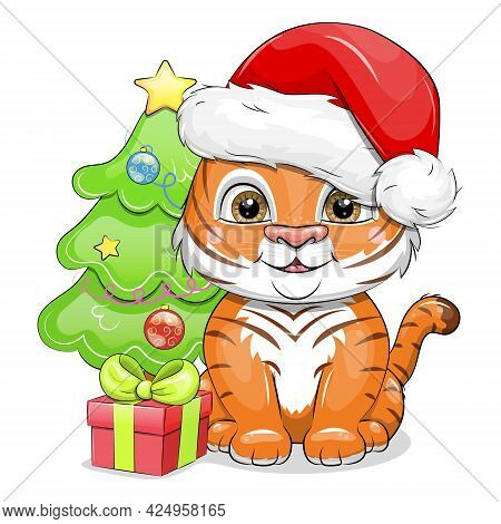 Tiger Cub Wearing Santa Claus Hat With Gift And Christmas Tree. Cute Cartoon Vector Illustration Iso