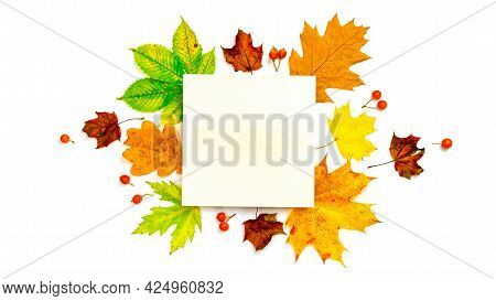 Autumn Composition. Frame Made Of Green, Yellow Dried Leaves, Red Berry Isolated On White Background
