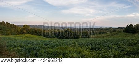 Hilly Landscape With Meadows And Deciduous Forests At Dusk, Countryside Panorama On Slopes Of Mounta