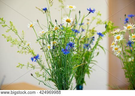 Summer Flowers In A Vase. White Daisies And Blue Cornflowers In A Vase. Midsummer Flowers