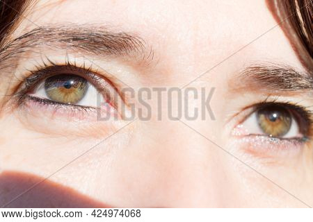 Green And Brown Eyes Of Woman In The Foreground