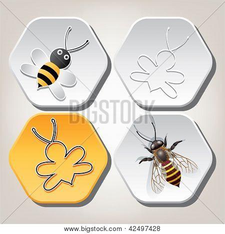 Vector Symbols Of Bee On Honeycell