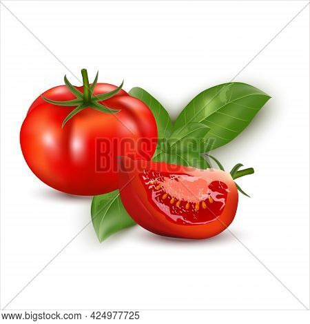 3d Realistic Fresh Red Big Tomato Whole  And Cut Slice Tomato With Basil Leaves Isolated On White Ba