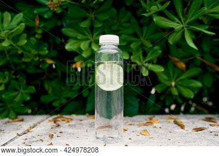 Bottle Of Water With Lime Stands On A Tile Near A Green Bush