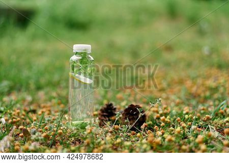 Bottle Of Water With Lemon, Lime And Mint Inside Stands On The Ground Near Fir Cones And Needles