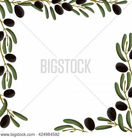 Frame, Postcard Of An Olive Branch On A White Isolated Background. Template For Scrapbooking. Cute G