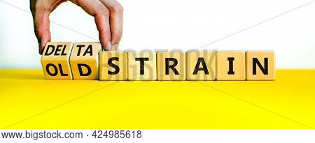 Covid-19 Old Or Delta Strain Symbol. Doctor Turns Wooden Cubes And Changes Words Old Strain To Delta