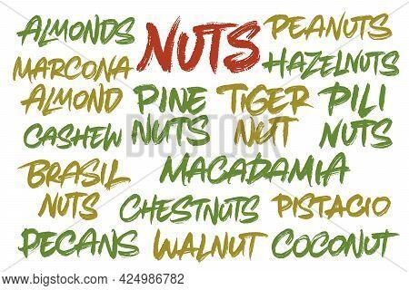 Nuts Vector Inscription. Unique Oroginal Handwritten Lettering