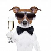 cheers dog with a glass of champagne poster