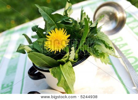 A Pot With Edible Weed Plants For Soup