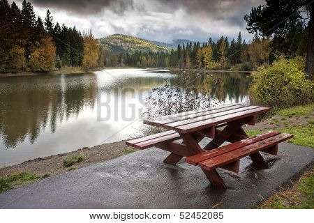 Pretty Scenic By The Picnic Table.