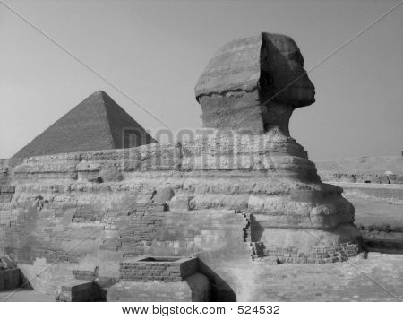 Sphinx And The Pyramid Of Cheops In B/w