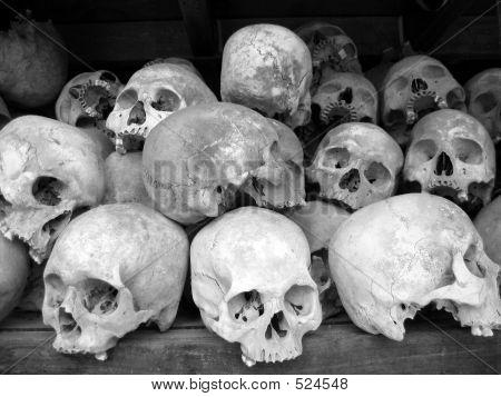 Human Skulls In B/w