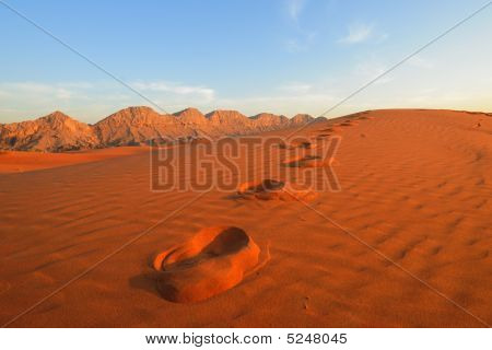 Footprints In The Desert