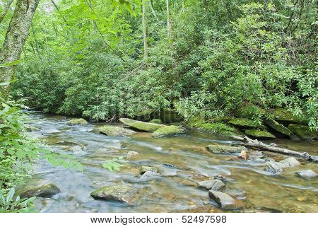 Blue Ridge Creek