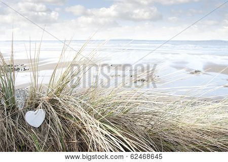 Lone Blue Wooden Heart On Beach Dunes