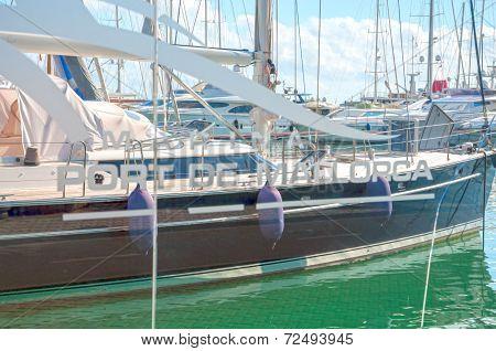 Palma Harbor