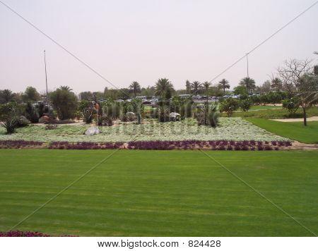 Garden in Dubai
