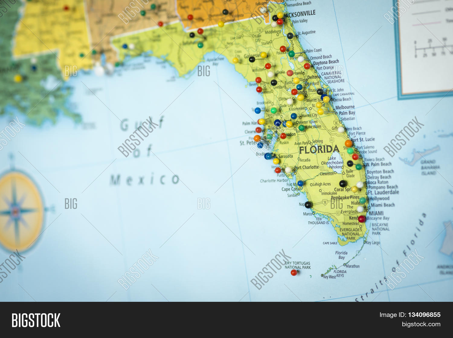 Detail Map Of Florida.Colorful Detail Map Image Photo Free Trial Bigstock