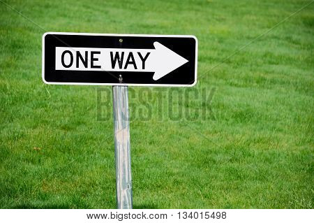 one way sign against green lawn for design