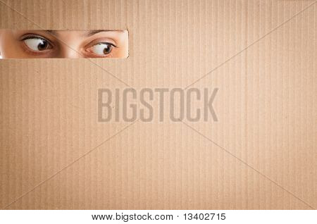 Woman Looking Through The Hole In Cardboard