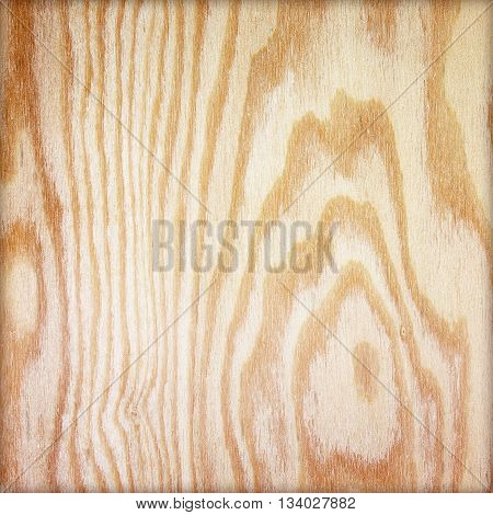 Wood background or texture. plywood texture background. plywood texture with natural wood pattern