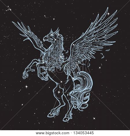 Hippogriff greek mythological creature.. Legendary beast concept drawing. Heraldry figure. Vintage tattoo design. Sketch on a nightsky background with stars. EPS10 vector illustration.