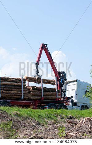 Glenariff Forest ParkNorthen Ireland june 06 2016. Crane operator loading logs on to truck