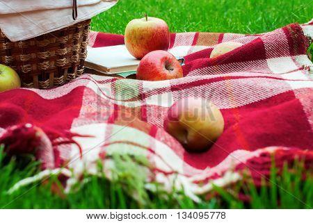 Apples Basket Fruit Checkered Plaid Picnic Grass