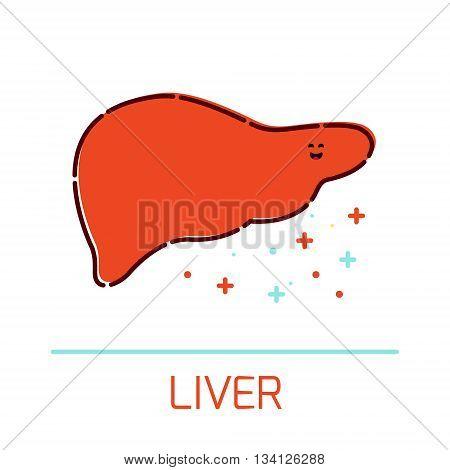 Cute healthy liver icon made in cartoon style. Liver cartoon character. Human body organs anatomy icon. Medical human internal organ symbol. Medical concept. Vector illustration.