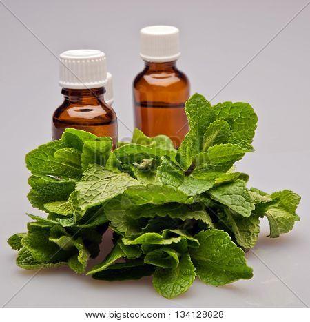 fresh mint leaves medical bottles aroma natural