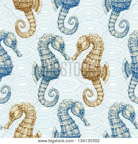 Sea horse vector seamless pattern. Marine life print