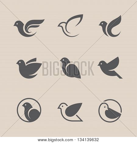 Bird icons set. Dove and pigeon abstract symbol. Can be used for freedom or peace spa beauty health or family care center logo concept